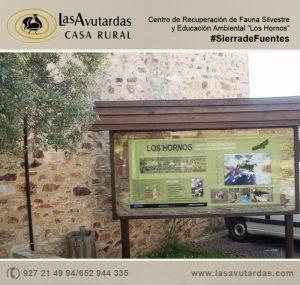 Centro de recuperación de aves en Sierra de Fuentes