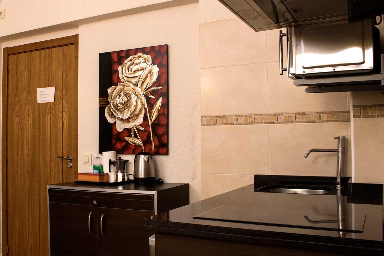 Cocina equipada con vitrocerámica, microhondas, cafetera, hervidor, frigorífico...